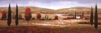 Tuscan Poppies I Fine Art Print