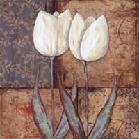"""Tulip II by Jo Moulton - 12"""" x 12"""""""