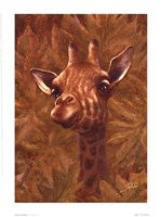Safari Giraffe Fine Art Print