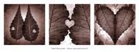 """Poetica Autumnalis Series II by Pawel Winczewski - 37"""" x 14"""""""