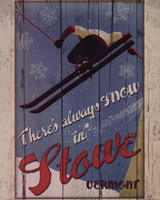 Ski Stowe Fine Art Print