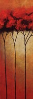 Transcendental Grove III Fine Art Print