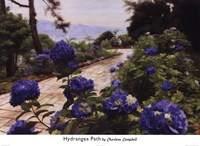 Hydrangea Path Fine Art Print