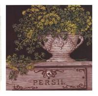 "Persil by Janet Kruskamp - 9"" x 9"""