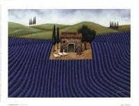 Lavender Field Fine Art Print