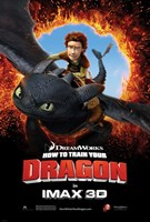 How to Train Your Dragon - Style H Framed Print