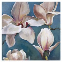 New Magnolias II Fine Art Print