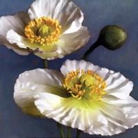 Poppy Parfait I Fine Art Print