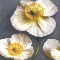 Poppy Parfait II Fine Art Print