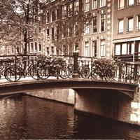 Autumn in Amsterdam III Framed Print