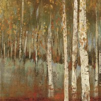 Along The Path I by Allison Pearce - various sizes