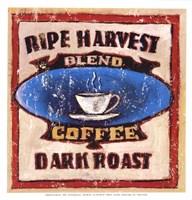 Gold Star Coffee I Fine Art Print