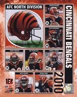 2010 Cincinnati Bengals Team Composite Fine Art Print