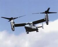 """V-22 Osprey United States Marine Corps - 10"""" x 8"""""""