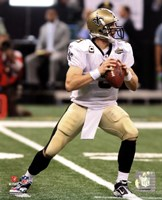 Drew Brees 2010 Action Fine Art Print