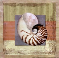 "Montego Nautilus by Paul Brent - 12"" x 12"" - $9.99"