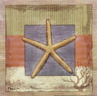 "Montego Starfish by Paul Brent - 12"" x 12"" - $9.99"