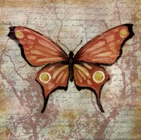 Vintage Butterflies I Fine Art Print
