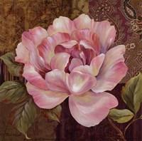 Esperance Rose - petite Framed Print