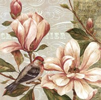 Magnolia Collage II - mini Fine Art Print