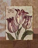 Flower Trio - mini Framed Print
