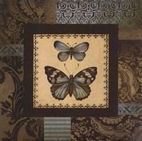 "Butterfly II - petite by Kimberly Poloson - 6"" x 6"", FulcrumGallery.com brand"