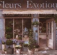 Fleurs Exotique Framed Print