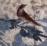 """Songbird I by Carol Robinson - 12"""" x 12"""""""