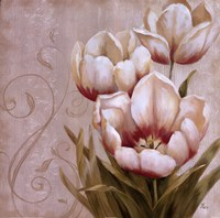 Perfect Blooms II Framed Print