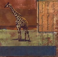 Serengeti Giraffe Fine Art Print