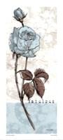 """10"""" x 22"""" Flowers"""