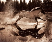 Running on Water III Fine Art Print