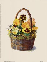 Sunshine Pansy Basket Framed Print