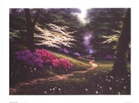 Dogwood Trail Fine Art Print