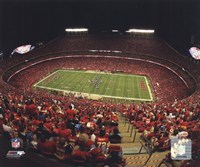 Arrowhead Stadium 2010 Framed Print