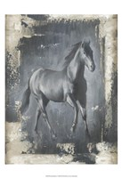 Running Stallion I Framed Print