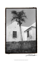 "13"" x 19"" Bermuda Pictures"