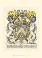 Noble Heraldry IV Fine Art Print