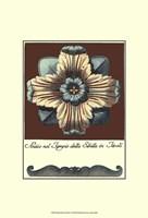 Aqua & Brown Rosette I Fine Art Print