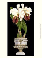 """Small Orchids in Silver (IP) I - 10"""" x 13"""" - $10.49"""