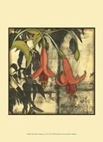 "Mini Fuchsia & Silhouette IV by Jennifer Goldberger - 10"" x 13"""