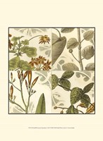 "Small Botanical Quadrant I (P) by Vision Studio - 10"" x 13"""