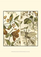 "Small Botanical Quadrant II (P) by Vision Studio - 10"" x 13"""