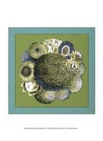 """Small Celadon Bouquet I by Chariklia Zarris - 10"""" x 13"""""""
