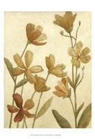 "Small Wildflower Field II by Megan Meagher - 13"" x 19"""