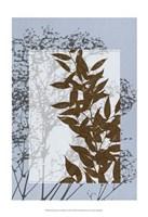 "Sm Translucent Wildflowers VI by Jennifer Goldberger - 13"" x 19"""