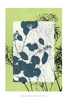 "Sm Translucent Wildflowers VII by Jennifer Goldberger - 13"" x 19"""