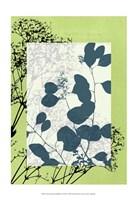"Sm Translucent Wildflowers VIII by Jennifer Goldberger - 13"" x 19"""