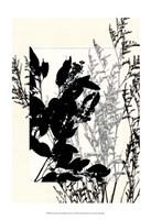 "Sm Translucent Wildflowers IX by Jennifer Goldberger - 13"" x 19"""
