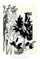 "Sm Translucent Wildflowers X by Jennifer Goldberger - 13"" x 19"""